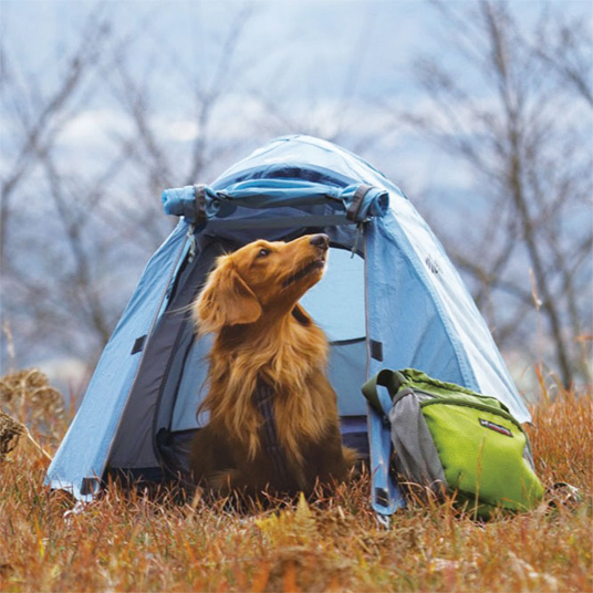 モンベルドギードーム犬用テント