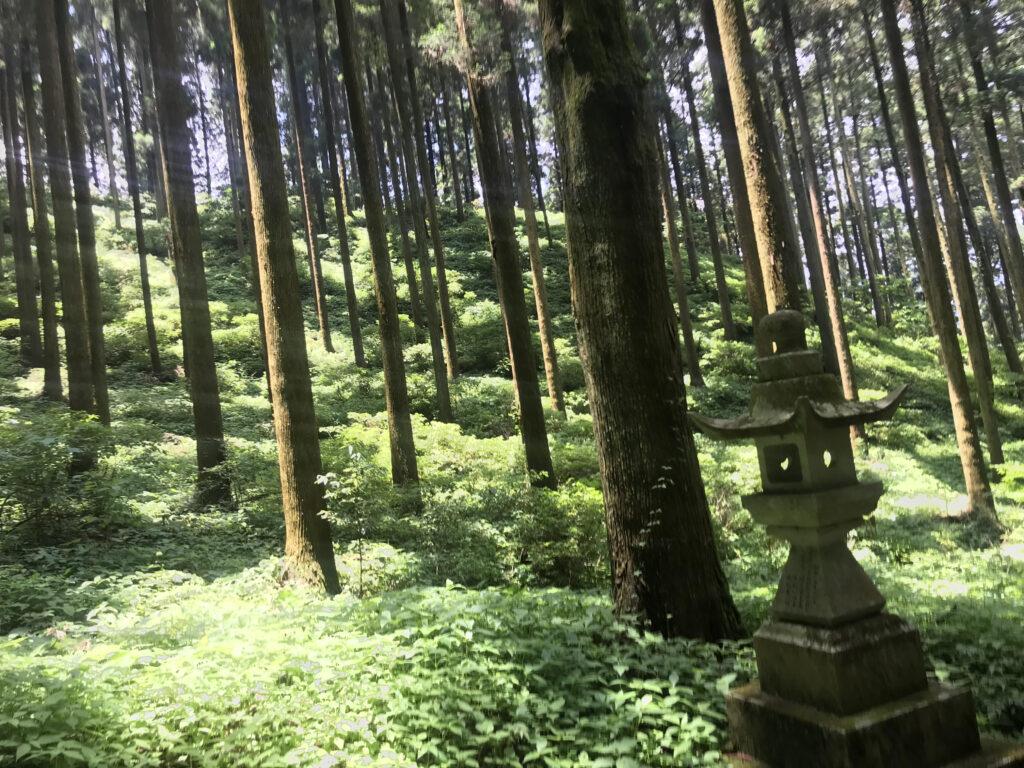 上色見熊野座神社参道石灯篭
