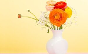 花 サブスク ギフト 定期